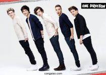 Thông tin về các thành viên nhóm One Direction