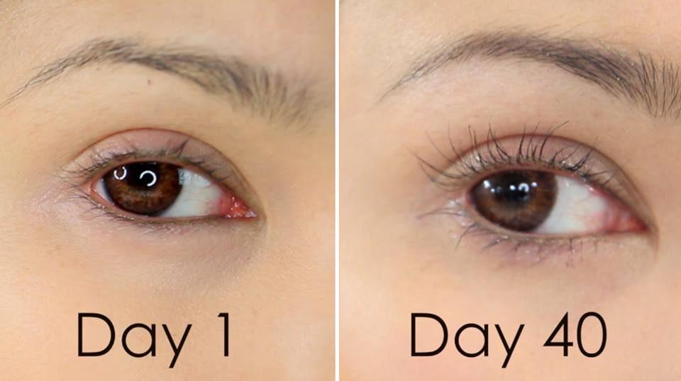 Công dụng DHC Eyelash Tonic