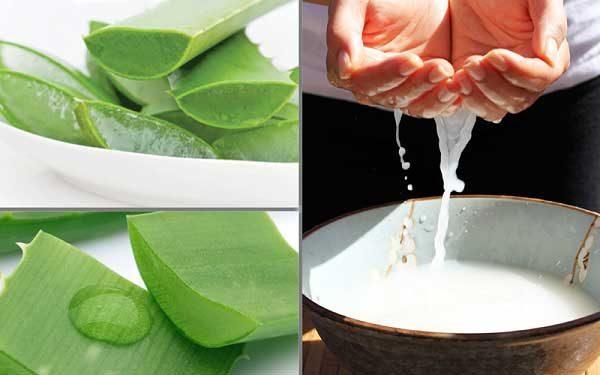 Mặt nạ kết hợp giữa nha đam và nước vo gạo