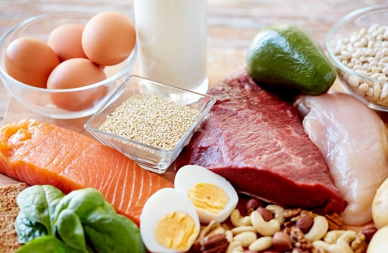 Nhóm thực phẩm giàu Protein