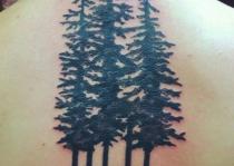 gáy xăm cây thông