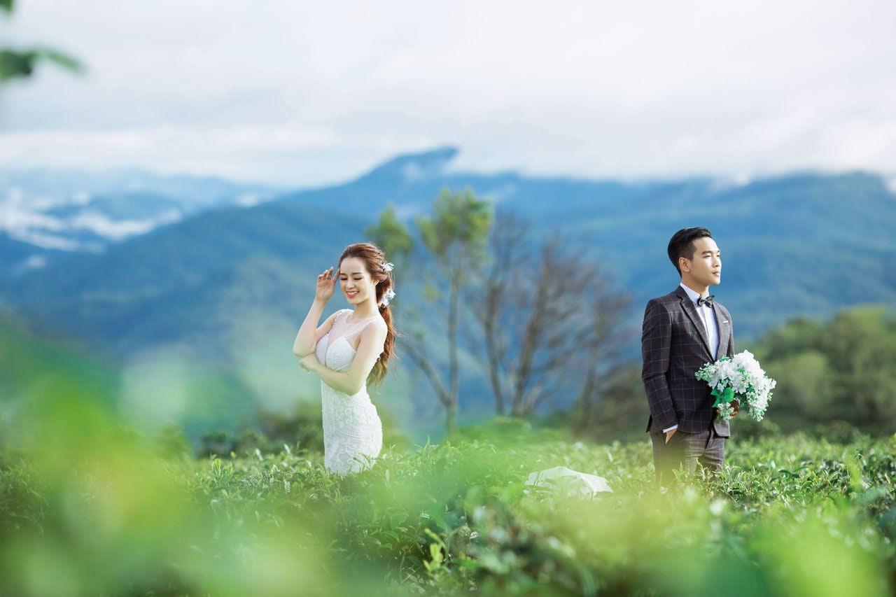 Đồi Chè Cầu Đất làm tôn thêm sắc đẹp cho áo cưới